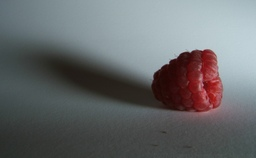 Rasberryf810_2